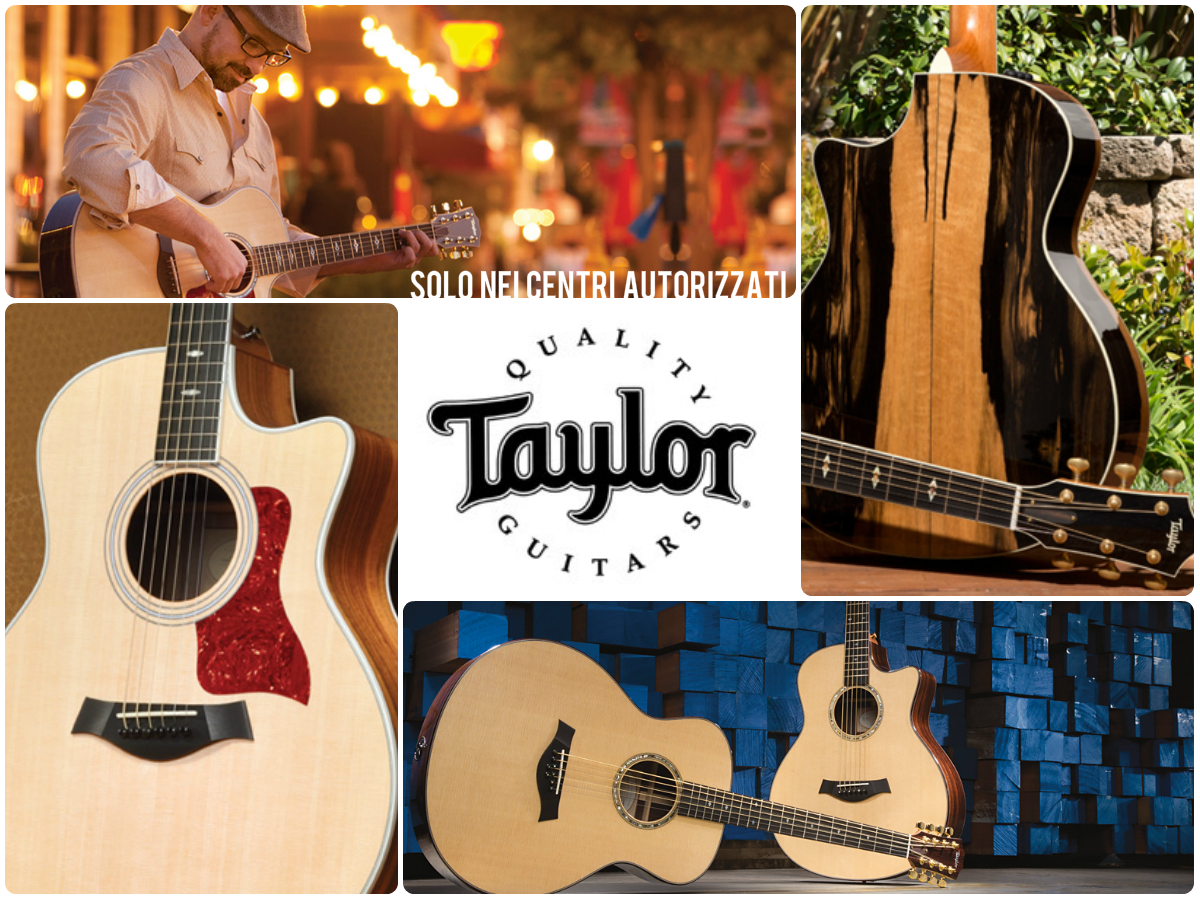 Centri Taylor