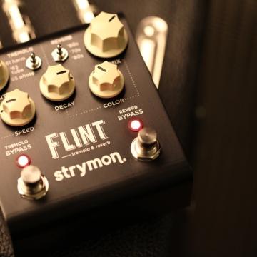Flint_Strymon_Backline